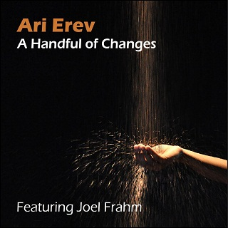 "Front cover of ""A Handful of Changes"""